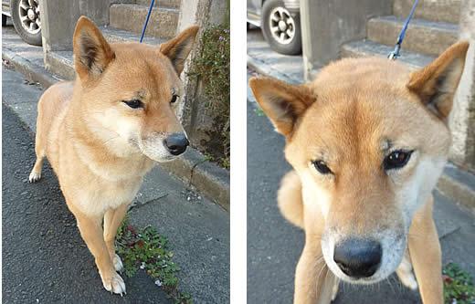20100506ku-chan2.jpg