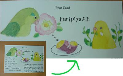20110715card.jpg