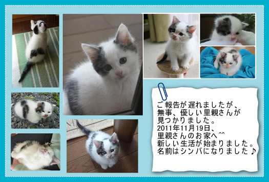 20120129card.jpg