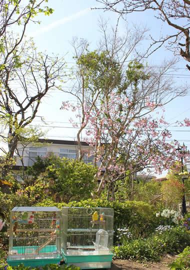 20130704ruripiyo&kaido.jpg